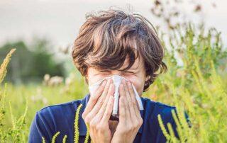Arizona Plants Allergies